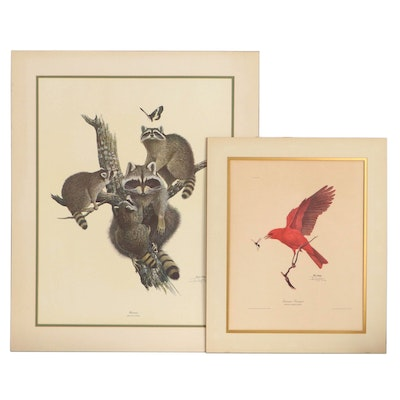 """Ray Harm Offset Lithographs """"Racoon"""" and """"Summer Tanager,"""" Late 20th Century"""