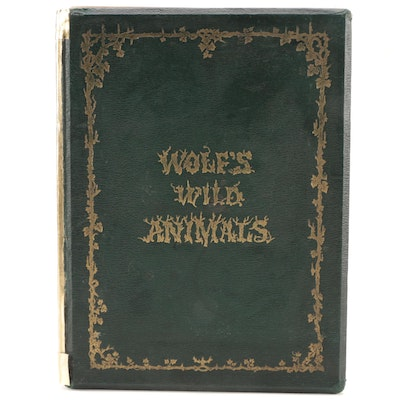 """Illustrated """"The Life and Habits of Wild Animals"""" by Joseph Wolf, 1874"""