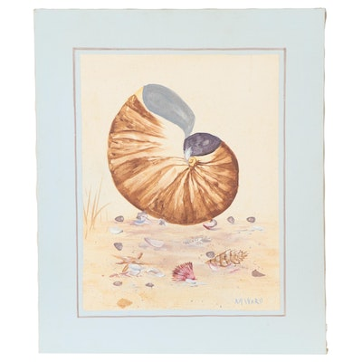 Oil Painting of Seashells Attributed to Mary Love Ward, Late 20th Century