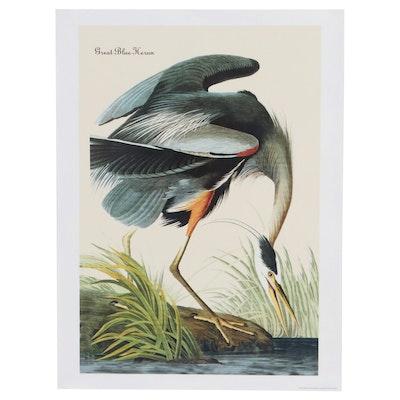 """Giclée After John James Audubon """"Great Blue Heron,"""" 21st Century"""