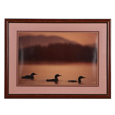 Chromogenic Color Photograph of Loons in Water, 1995