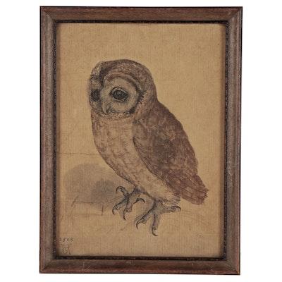 """Collotype After Albrecht Dürer """"Little Owl"""""""