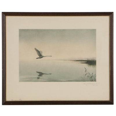 Pond Landscape Etching of Flying Swan