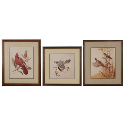 Harold Roe Avian Wildlife Offset Lithographs, Circa 1970