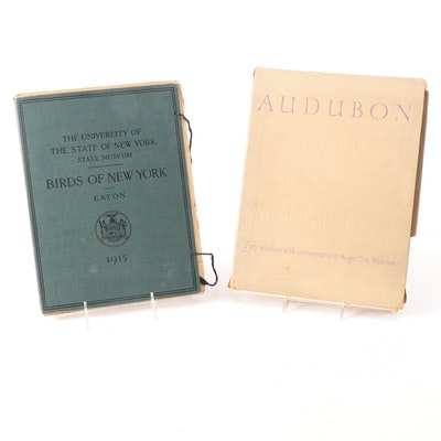 Ornithology Folios, Early to Mid-20th Century