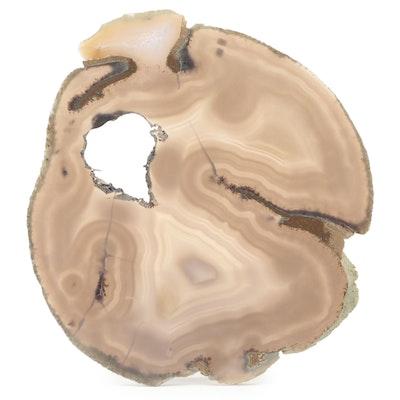 Polished Natural Agate Slice